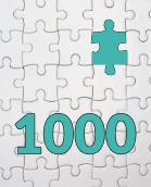 1000 Teile